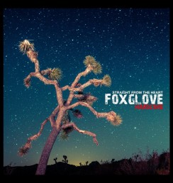 Foxglove - Straight From The Heart 7inch